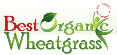 Best Organic WheatGrass